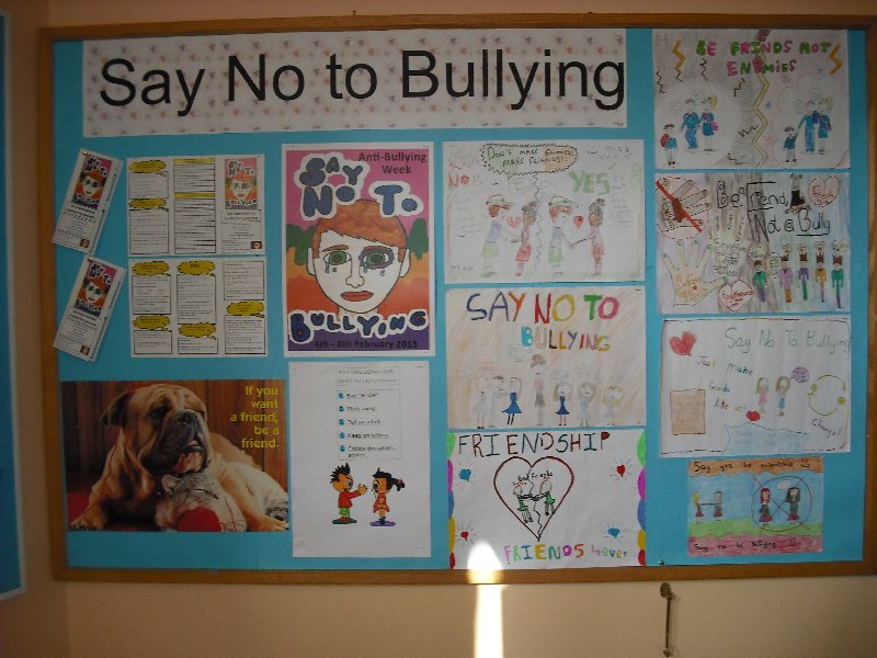 say no to school bullying Why just say no won't prevent bullying this discussion guide for middle- and high-school students helps youth consider the impact of bullying on the school as a whole, and learn about safe ways to help a student who has been mistreated.