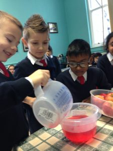 Measuring using Millilitres and Litres