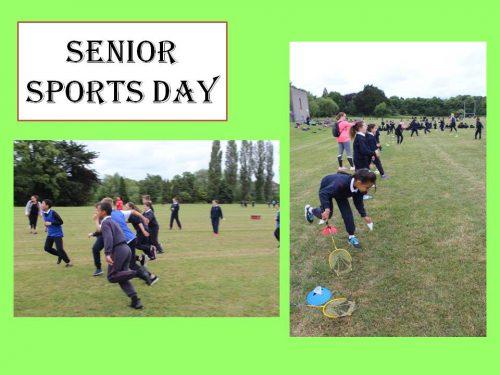 Senior Sports Day 5 a